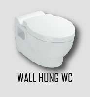 Wall hung WC