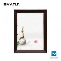 Evans Mirror MS03